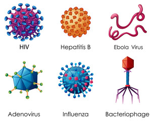 Wall Murals Kids Six types of viruses on white background