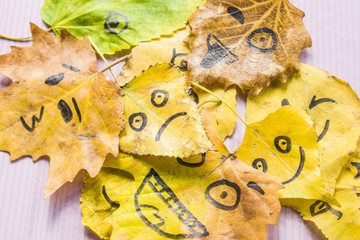 A lot of smiley leaves lie