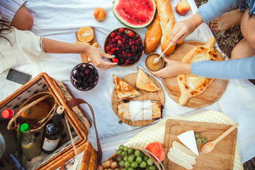 Picnic set with fruit, cheese, toast, honey, wine with a wicker basket and a blanket. Beautiful summer background with girl and products on nature