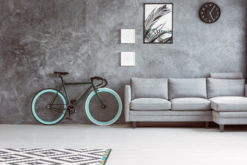 Bike in grey living room