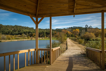 Landscape and Autumn exposure in a wooden deck done in Pateira de Fermentelos, portugal
