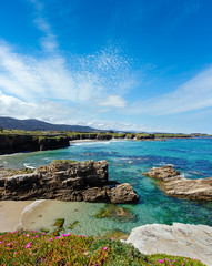 Poster Cote Atlantic blossoming coastline (Spain).
