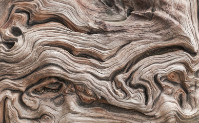 close up old aged wooden texture abstract background  Fototapete