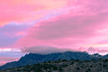 Poster Candy pink Pink sunset clouds Big Bend NP Texas USA