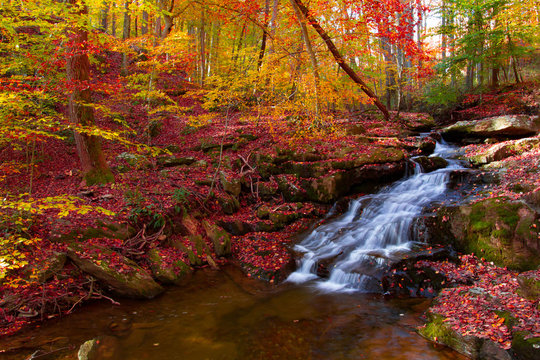 beautiful little waterfall in Autumn with vibrate colors on the Gunpowder river maryland