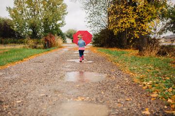 Red Polka Dot Umbrella