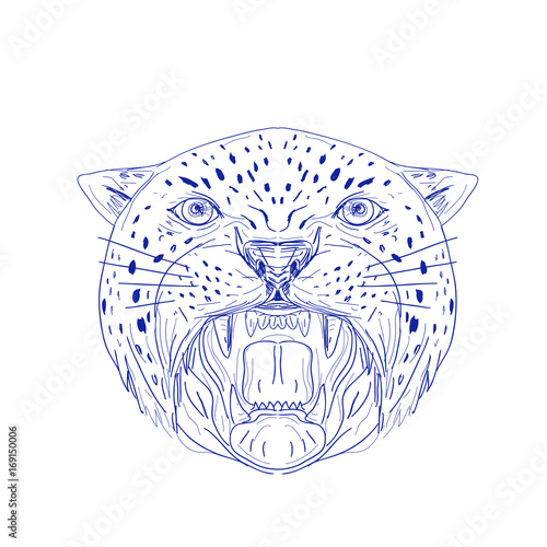 angry jaguar head drawing