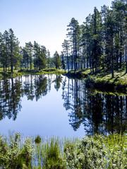 Storfjället, Ajaure, Schweden, Norrland, Lappland