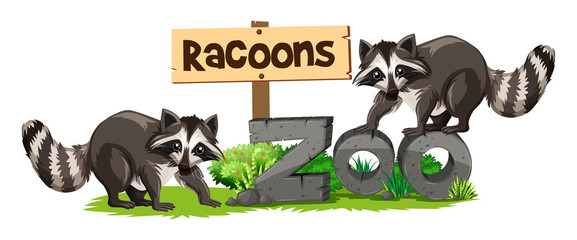 Racoons at the zoo sign