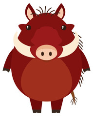 Warthog with happy face