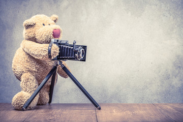 Teddy Bear photographer with old retro outdated film camera making photo shoot. Vintage instagram style filtered photography