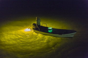吉野川のシラスウナギ漁