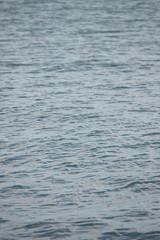 Wasser Oberfläche