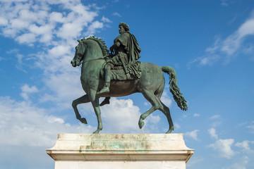 Fototapete - Statue of Louis XIV in Lyon, France