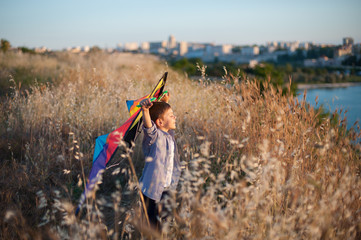 dreaming cute little boy with colorful kite on the field with sea and town on background