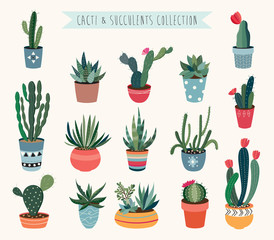 Cacti and succulents vector collection.