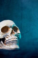 Halloween Images, skulls and eyeballs, a creepy peek at Halloween.