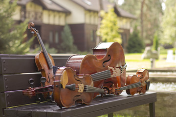 String Quartet. Cello. Viola. Violin. Live music. Concert in the forest