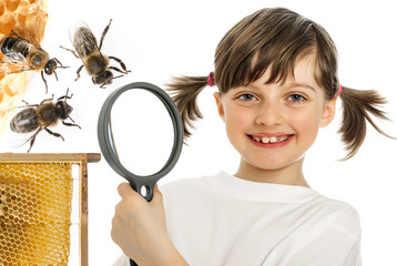 education biology for children - little girl and bees