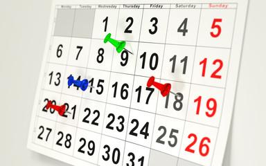Calendar and pins