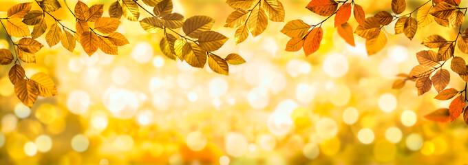 Wall Mural - Herbstblätter als Rahmen vor buntem Bokeh Hintergrund