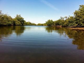 Blue River Season