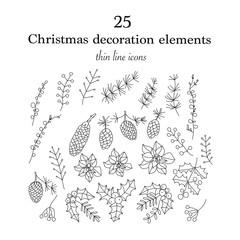 Set of 25 Christmas botanical symbols.