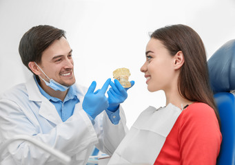 Male dentist showing young woman the mockup of jaw
