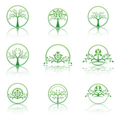 Set of abstract  trees. Eco lifestyle concept illustration.