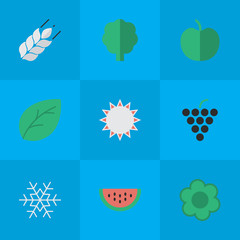 Vector Illustration Set Of Simple Horticulture Icons. Elements Corn, Sheet, Wood And Other Synonyms Tree, Wineglass And Wine.