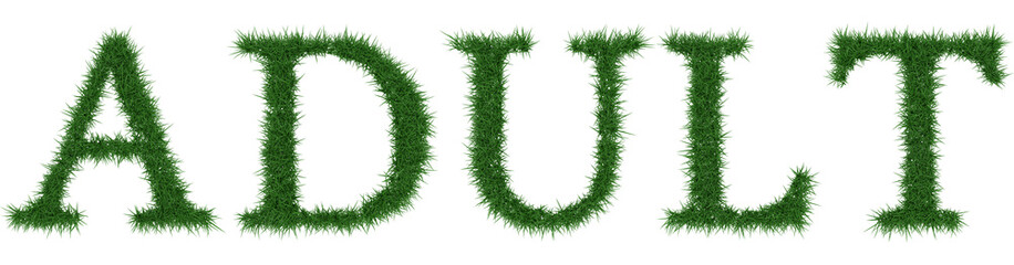 Adult - 3D rendering fresh Grass letters isolated on whhite background.