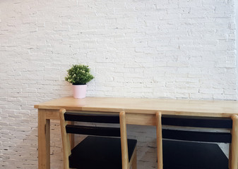 Mini leaf green plant tree in pot on wooden table