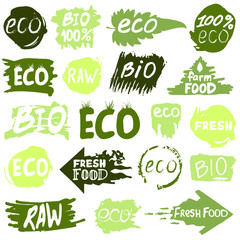 Big set with icons and logos, eco, bio, raw, fresh food concepts. Vector design elements in green colors on a white background.