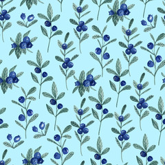 Seamless pattern with blueberry. Watercolor hand drawn