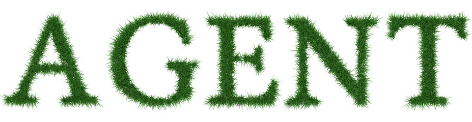 Agent - 3D rendering fresh Grass letters isolated on whhite background.