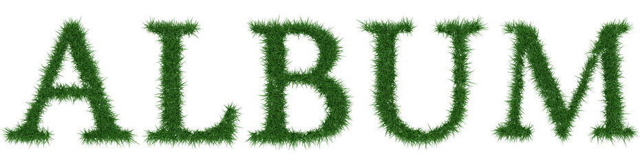Album - 3D rendering fresh Grass letters isolated on whhite background.