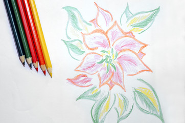 Color pencils and a sheet of paper with a picture.
