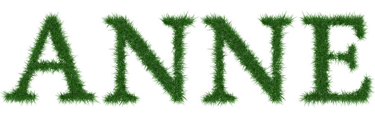 Anne - 3D rendering fresh Grass letters isolated on whhite background.