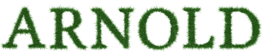 Arnold - 3D rendering fresh Grass letters isolated on whhite background.