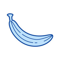 Banana vector line icon isolated on white background. Banana line icon for infographic, website or app. Blue icon designed on a grid system.