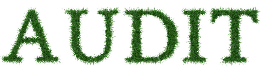 Audit - 3D rendering fresh Grass letters isolated on whhite background.