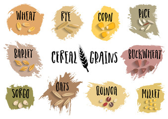 Vector set of cereal emblems with black handwritten lettering and hand-drawn stylized grains. For packing groats, advertising healthy food.