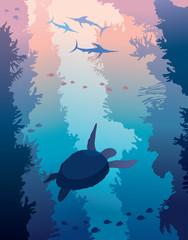 Underwater sea - coral reef, turtle, swordfishes.