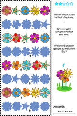 Visual puzzle or picture riddle: Match the pictures of flower rows to their shadows. Answer included.