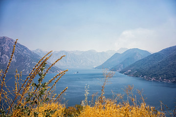 Kotor bay. View from the mountain. Yellow grass on the first row.