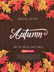 Autumn sale background layout decorate with leaves on wood for shopping sale or promo poster and frame leaflet or web banner.Vector illustration template.