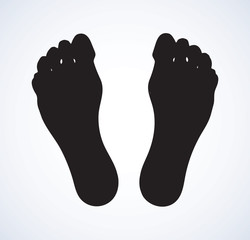 Foot. Vector drawing