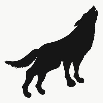 Silhouette of the Howling Wolf