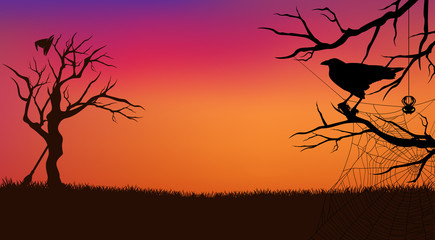 Halloween evening vector background with raven bird, spider web, witch broom and hat, and bare twisted tree branches silhouette