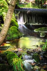 Wasserfall im Bach von Kniebis im Schwarzwald